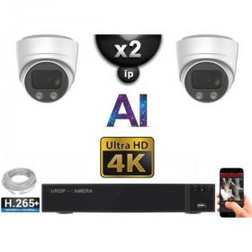 Kit Vidéo Surveillance PRO IP 2x Caméras POE Dômes AI IR 30M Capteur SONY UHD 4K + Enregistreur NVR 8 canaux H265+ 2000 Go