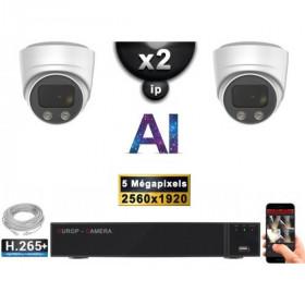 Kit Vidéo Surveillance PRO IP : 2x Caméras POE Dômes AI IR 25M Capteur SONY 5 MP + Enregistreur NVR 9 canaux H265+ 1000 Go