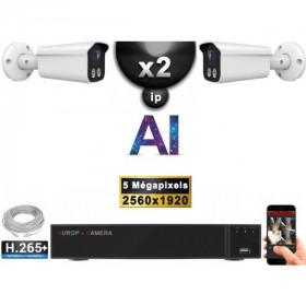 Kit Vidéo Surveillance PRO IP : 2x Caméras POE Tubes AI IR 25M Capteur SONY 5 MP + Enregistreur NVR 9 canaux H265+ 1000 Go