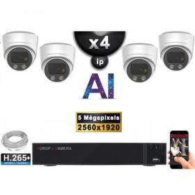Kit Vidéo Surveillance PRO IP : 4x Caméras POE Dômes AI IR 25M Capteur SONY 5 MP + Enregistreur NVR 9 canaux H265+ 2000 Go