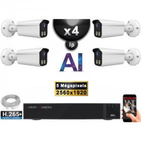 Kit Vidéo Surveillance PRO IP : 4x Caméras POE Tubes AI IR 25M Capteur SONY 5 MP + Enregistreur NVR 9 canaux H265+ 2000 Go