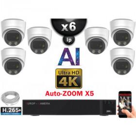 Kit Vidéo Surveillance PRO IP 6x Caméras POE Dômes AI AUTOZOOM X5 IR 30M UHD 4K + Enregistreur NVR 8 canaux H265+ 4K 3000 Go
