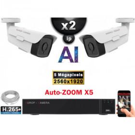 Kit Vidéo Surveillance PRO IP : 2x Caméras POE Tubes AI AUTOZOOM X5 IR 60M SONY 5 MP + Enregistreur NVR 9 canaux H265+ 1000 Go