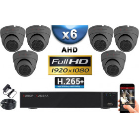 KIT PRO AHD 6 Caméras Dômes IR 20m Capteur SONY FULL HD 1080P + Enregistreur XVR 5MP H265+ 2000 Go / Pack vidéo surveillance