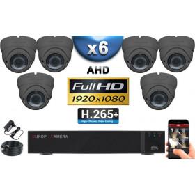 KIT PRO AHD 6 Caméras Dômes IR 35m Capteur SONY FULL HD 1080P + Enregistreur XVR 5MP H265+ 2000 Go / Pack vidéo surveillance