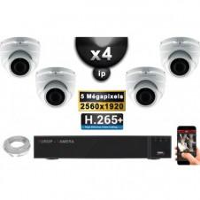 Kit Vidéo Surveillance PRO IP : 4x Caméras POE Dômes IR 35M SONY 5 MEGA-PIXELS + Enregistreur NVR 16 canaux H265 3000 Go