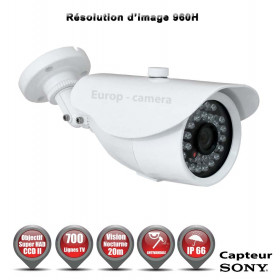 Tube Anti-vandal 700 lignes 960H 1/3 Sony SUPER HAD CCD 2 Etanche IR 20m / EC-CS700 - Caméra de Vidéo surveillance