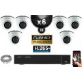 Kit Vidéo Surveillance PRO IP : 6x Caméras POE Dômes IR 20M Capteur SONY 1080P + Enregistreur NVR 8 canaux H264 FULL HD 3000 Go