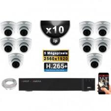 Kit Vidéo Surveillance PRO IP : 10x Caméras POE Dômes IR 35M SONY 5 MEGA-PIXELS + Enregistreur NVR 36 canaux H265 3000 Go