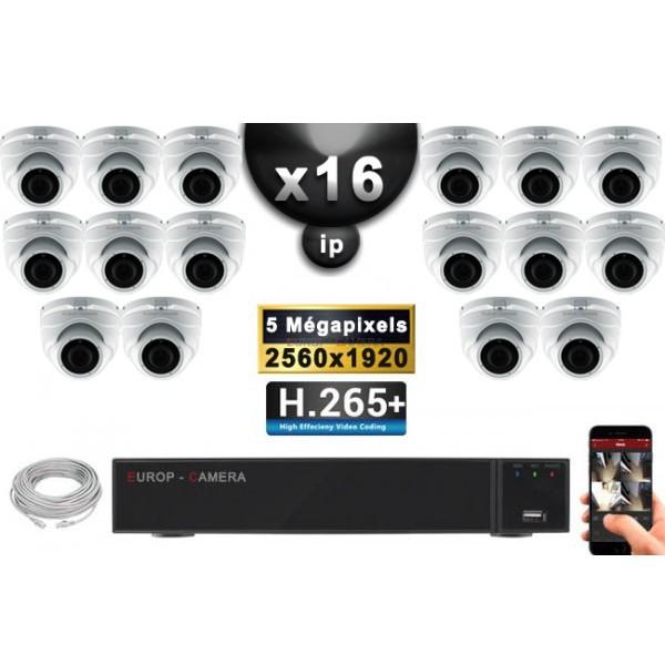 kit vid o surveillance pro ip 16x cam ras poe d mes ir 35m sony 5 mega pixels enregistreur. Black Bedroom Furniture Sets. Home Design Ideas