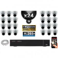 Kit Vidéo Surveillance PRO IP : 24x Caméras POE Dômes IR 35M SONY 5 MEGA-PIXELS + Enregistreur NVR 36 canaux H265 3000 Go