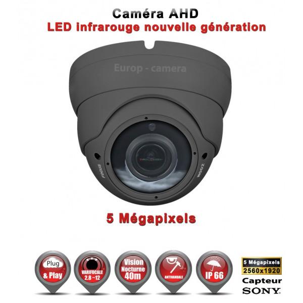 Dôme AHD / CVI / TVI Capteur SONY 5 MegaPixels IR IR 35m étanche réf: EC-AHDD304MPS - caméra vidéo surveillance