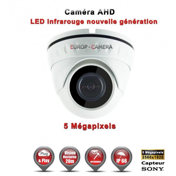 Mini Dôme AHD / CVI / TVI Capteur SONY 5 MegaPixels IR 20m étanche réf: EC-AHDD20B4MPS - caméra surveillance