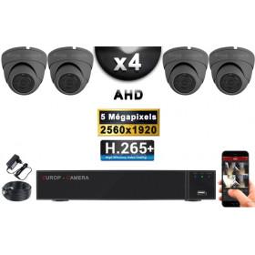 KIT PRO AHD 4 Caméras Dômes IR 20m Capteur SONY 5 MegaPixels + Enregistreur XVR 8MP H265+ 2000 Go / Pack de vidéo surveillance