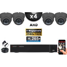 KIT PRO AHD 4 Caméras Dômes IR 35m Capteur SONY 5 MegaPixels + Enregistreur XVR 8MP H265+ 2000 Go / Pack de vidéo surveillance