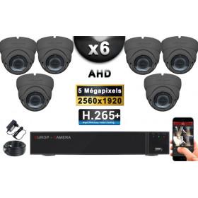 KIT PRO AHD 6 Caméras Dômes IR 35m Capteur 5 MegaPixels + Enregistreur XVR 8MP H265+ 2000 Go / Pack de vidéo surveillance