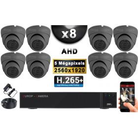 KIT PRO AHD 8 Caméras Dômes IR 20m Capteur SONY 5 MegaPixels + Enregistreur DVR XVR 8MP H265+ 3000 Go / Pack vidéo surveillance