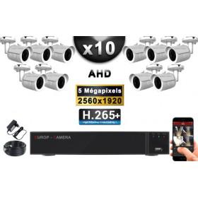 KIT PRO AHD 10 Caméras Tubes IR 30m Capteur SONY 5 MegaPixels + Enregistreur XVR 8MP H265+ 3000 Go / Pack vidéo surveillance