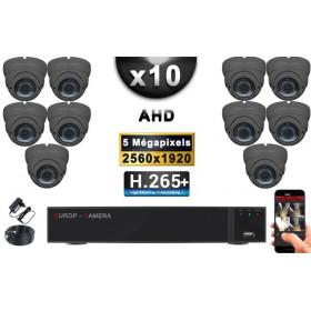 KIT PRO AHD 10 Caméras Dômes IR 35m Capteur SONY 5 MegaPixels + Enregistreur XVR 8MP H265+ 3000 Go / Pack vidéo surveillance