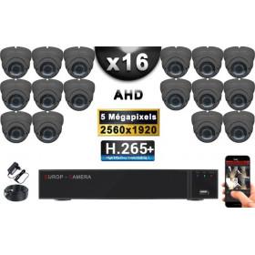 KIT PRO AHD 16 Caméras Dômes IR 35m Capteur SONY 5 MegaPixels + Enregistreur XVR 8MP H265+ 3000 Go / Pack vidéo surveillance