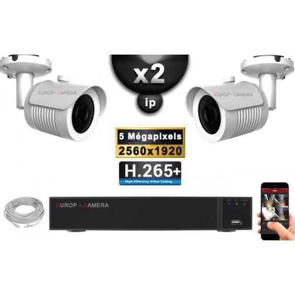 Kit Vidéo Surveillance PRO IP : 2x Caméras POE Tubes IR 30M Capteur SONY 5 MegaPixels + Enregistreur NVR 9 canaux H265+ 1000 Go