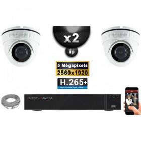 Kit Vidéo Surveillance PRO IP : 2x Caméras POE Dômes IR 20M Capteur SONY 5 MegaPixels + Enregistreur NVR 9 canaux H265+ 1000 Go