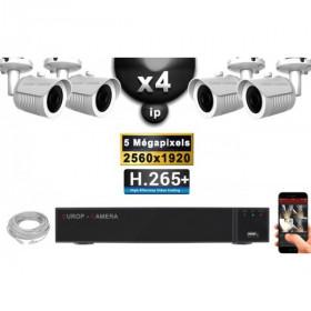 Kit Vidéo Surveillance PRO IP : 4x Caméras POE Tubes IR 30M Capteur SONY 5 MegaPixels + Enregistreur NVR 9 canaux H265+ 2000 Go