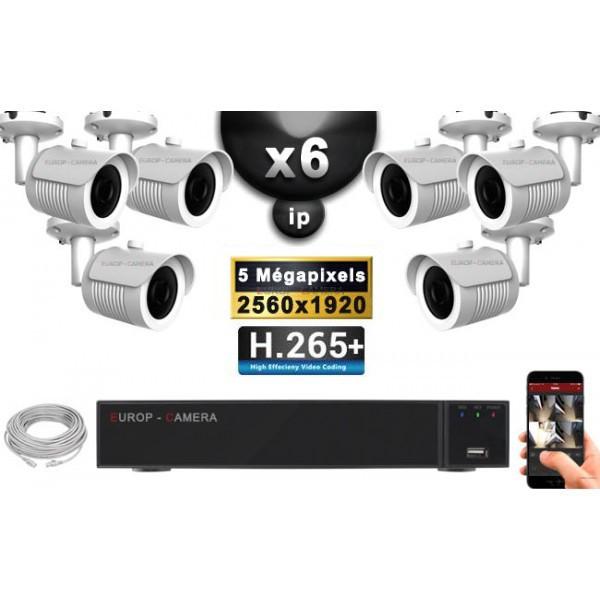 Kit Vidéo Surveillance PRO IP : 6x Caméras POE Tubes IR 30M Capteur SONY 5 MegaPixels + Enregistreur NVR 9 canaux H265+ 2000 Go