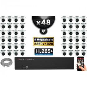 Kit Vidéo Surveillance PRO IP : 48x Caméras Dômes IR 20M Capteur SONY 5 MegaPixels + Enregistreur NVR 58 canaux H265+ 3000 Go