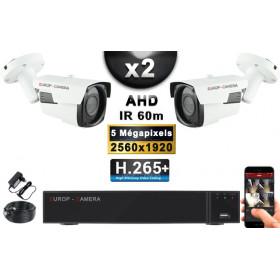 KIT PRO AHD 2 Caméras Tubes IR 60m Capteur SONY 5 MegaPixels + Enregistreur XVR 8MP H265+ 1000 Go / Pack de vidéo surveillance