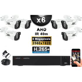 KIT PRO AHD 6 Caméras Tubes IR 40m Capteur SONY 5 MegaPixels + Enregistreur XVR 8MP H265+ 2000 Go / Pack de vidéo surveillance