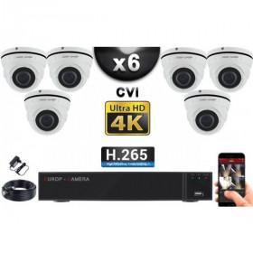 KIT PRO CVI 6 Caméras Dômes IR 35m 8 MegaPixels UHD 4K + Enregistreur CVI 8MP H264+ 2000 Go / Pack de vidéo surveillance