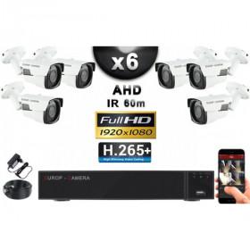 KIT PRO AHD 6 Caméras Tubes IR 60m Capteur SONY FULL HD 1080P + Enregistreur XVR 5MP H265+ 2000 Go / Pack vidéo surveillance