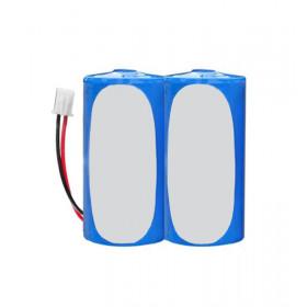 Lot de 2 piles ER34615 pour sirène MFPROTECT