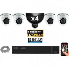 Kit Vidéo Surveillance PRO IP : 4x Caméras POE Dômes IR 20M Capteur SONY 5 MegaPixels + Enregistreur NVR 9 canaux H265+ 2000 Go